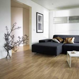 Huis inrichting beste inspiratie voor interieur design for Huis interieur tips